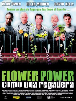Cartel de Flower Power (Como una regadera)