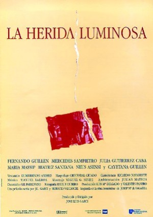 Cartel de La herida luminosa