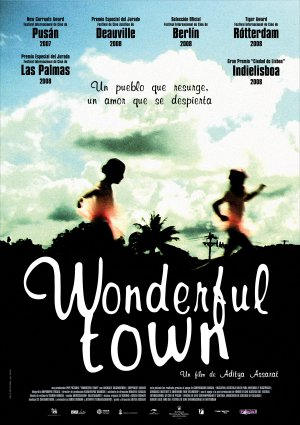 Cartel de Wonderful town