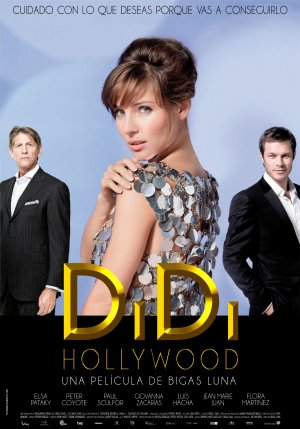 Cartel de Didi Hollywood
