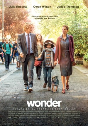 Cartel de Wonder