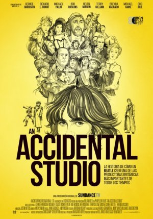 Cartel de An accidental studio
